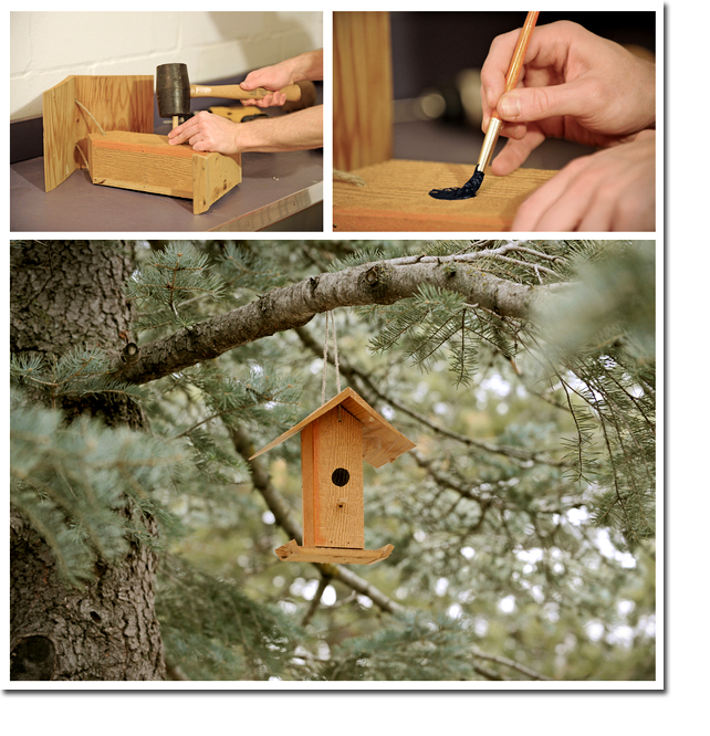 FAKE_BIRD_BOX