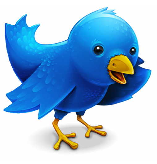 TWITTER_ICON_LARGE