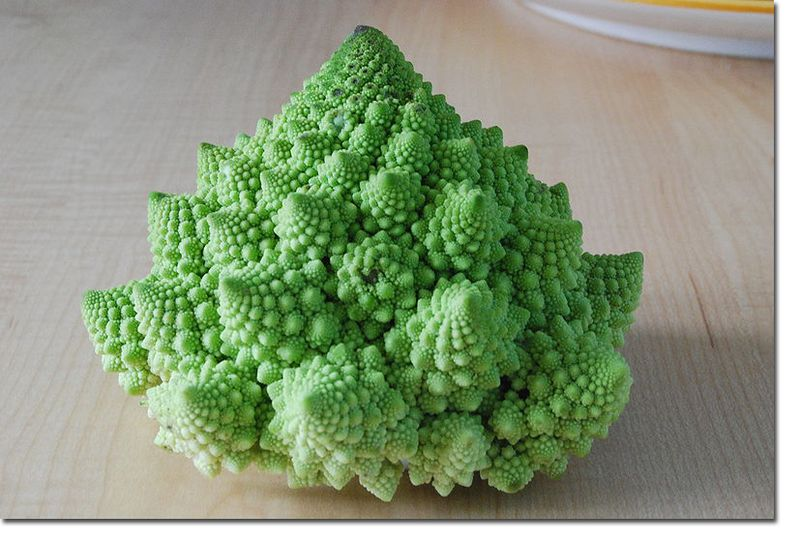 FRACTALS_IN_NATURE