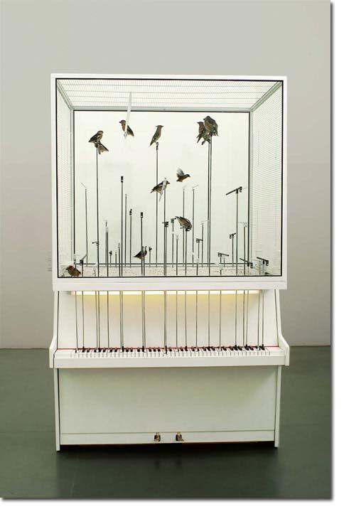 BIRD_PIANO