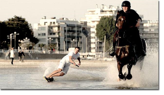 HORSE_SURFING