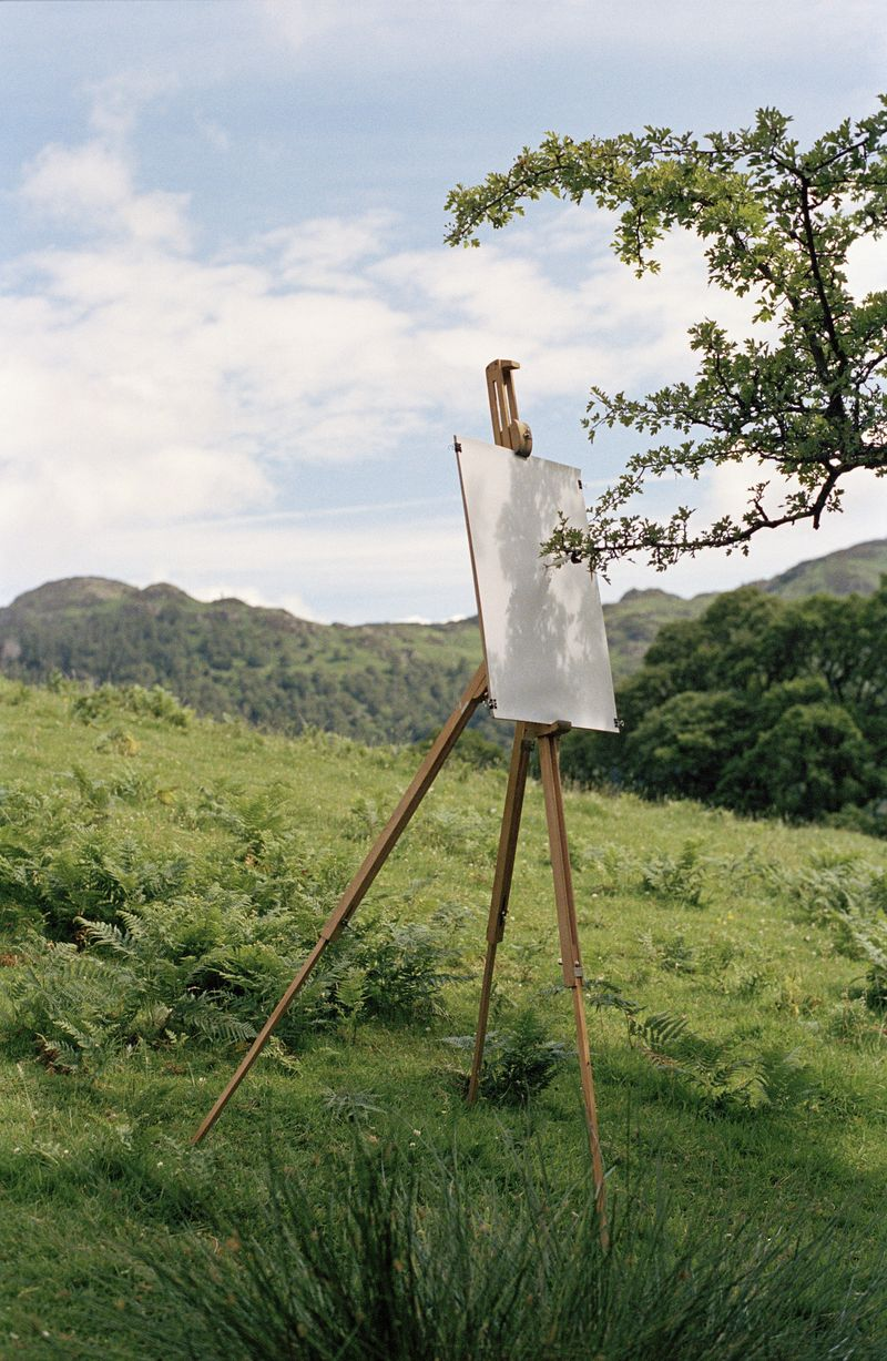 Tim+Knowles+Tree+Drawing+-+Hawthorn+on+easel+1+Foot+of+Castle+Crag+Borrowdale+2005+diptych+detail+of+C-type